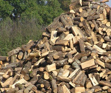 Valorisation des d chets verts bois de chauffage broyage d 39 anton arbre - Arbre fruitier comme bois de chauffage ...