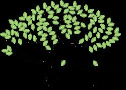 D'ANTON ARBRE Logo